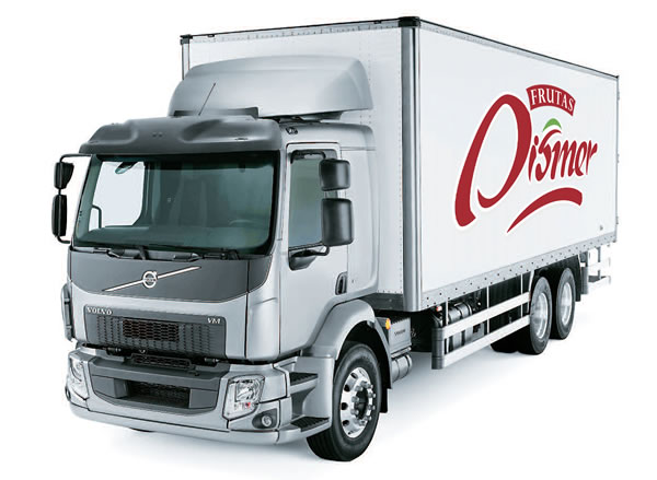 camiondismer