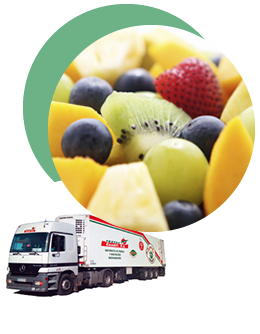 Camion Frutas Candil